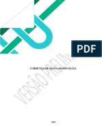 VERSÃO PRELIMINAR CURRÍCULO - MS 12-07.pdf