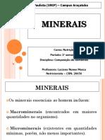 AULA Macrominerais e Microminerais.ppt
