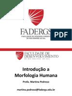 Introducao Morfo Humana