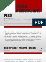 PRINCIPIOS DEL PROCESO LABORAL EN EL PERÚ - AUTOR JOSÉ MARÍA PACORI CARI.pptx