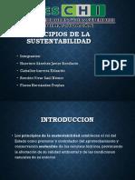 Principios de La Sustentabilidad (1)