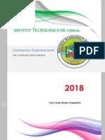 Comunicacion Organizacional - Copia