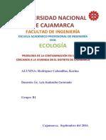 PROBLEMA DE LA CONTAMINACIÓN EN LUGARES CERCANOS A LA VIVIENDA EN EL DISTRITO DE CAJAMARCA.docx