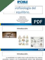 neurofisiologia equilbrio [Autoguardado].pptx