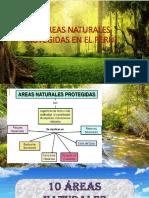 Las Áreas Naturales Protegidas en El Perú