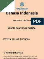 1. Konsep Dan Fungsi Bahasa