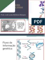 Aula 2 Revisao_biotec (1).pdf