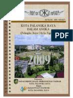 PKY 2009.pdf