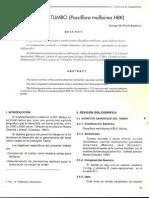 nectar de tumbo.pdf