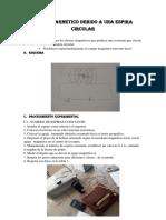 Campo Magnetico Informe 13