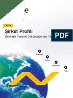 2018.08.31_SIRKET_PROFILI_2018K