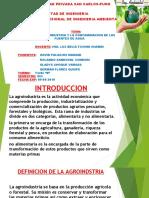 Agroindustria y La Contaminacion de Las Fuentes de Agua - Copia