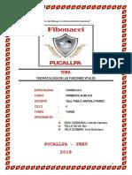TRABAJO ORIGINAL FISIOPATOLOGIA.docx