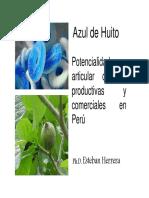 5 Potencialidad Del Azul de Huito Para Articular Cadenas