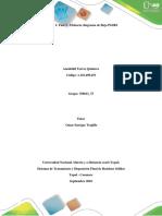 Fase 1 _ Aneidalid Torres Diagrama de Flujo PGIRS