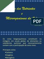 Ciclos biogeoquímicos e organismos do solo.ppt