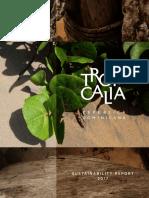 Tropicalia's Sustainability Report - 2017