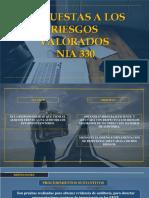 Diapositivas - Nia 330