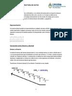 Sistema Binario - Algoritmo y Estructura
