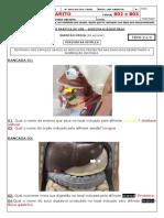 AP3 1º TRIM - TURMA 802 e 803 - GABARITO.pdf