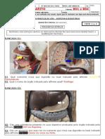 AP3 1º TRIM - TURMA 801 e 804 - GABARITO.pdf