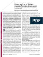 2004 - The Twilight of Heliozoa and Rise of Rhizaria,