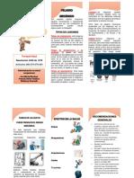 FOLLETO PELIGRO MECANICO.docx