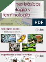 1.2 Nociones básicas terminología (1).pdf