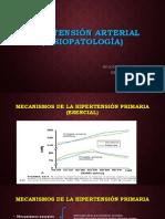 Hipertensión Arterial (Fisiopatología)