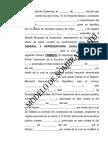 Nombramiento representante legal RGM.pdf