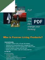 flppresentationno2-100428151716-phpapp02