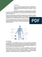 Pregunta 1 inmuno.docx