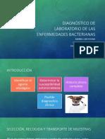 Diagnóstico de laboratorio de las enfermedades bacterianas.pptx