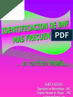2009-bnf-aam-modulo-vi-m-rocchi.pdf