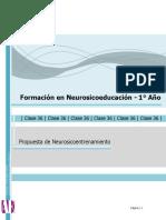 Apunte E Neurosicoentrenamiento.01