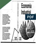 82165029-Luis-Cabral-Economia-Industrial.pdf