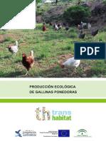 GALLINAS_PONEDORAS_ok.pdf