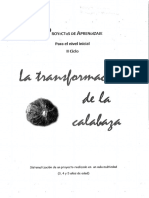 Proyecto La Tranformación de La Calabaza