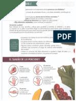 Dieta Saludable P1