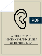 A Guide to the Mechanism and Levels of Hearing Loss