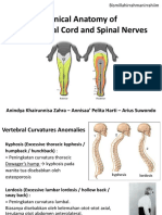 Back and Spinal Cord