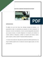 PROYECTO DE ECOPRODUCTOS.docx