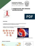 desarrollo cardio.pptx