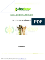 El Cultivo del Espárrago 2.pdf