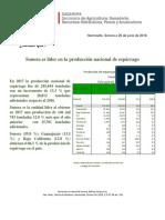 SAGARPA Sonora es Líder en la Producción Nacional de Espárrago.pdf