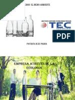 proyecto de ambiental.pptx