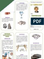 triptico materia.pdf