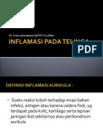 Dr. Arne Sp.tht-KL - Inflamasi Pada Telinga