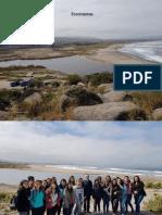 Interrelaciones ecológicas.pptx