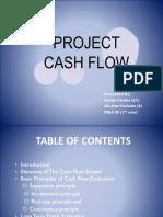 Final Project Cash Flows Ppt